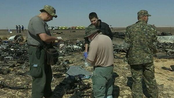 Сотрудники МЧС РФ брали пробы с обломков для следствия по крушению А321 - Sputnik Таджикистан