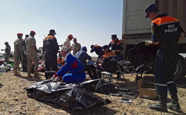 Поисковые работы на месте крушения российского самолета Airbus A321 в Египте. Архивное фото - Sputnik Таджикистан