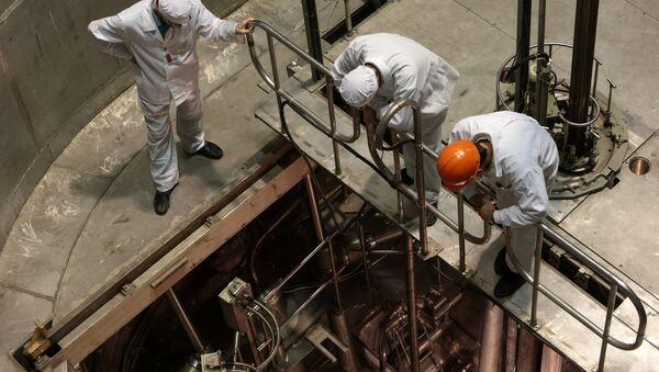 Сотрудники научно-исследовательского центра стоят у шахты реактора - Sputnik Таджикистан
