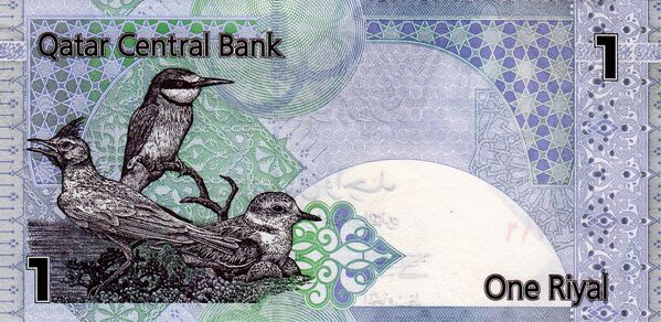 Катарский риал. Архивное фото - Sputnik Таджикистан