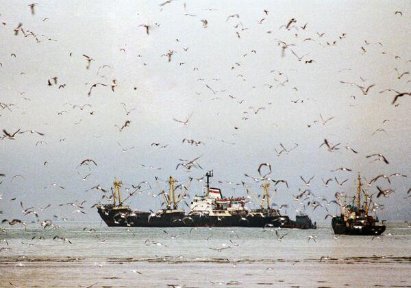 Рыболовецкие судна в море. Архивное фото - Sputnik Таджикистан