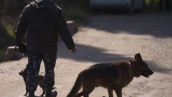 Сотрудник правоохранительных органов в Бишкеке (Кыргызстан). Архивное фото - Sputnik Таджикистан