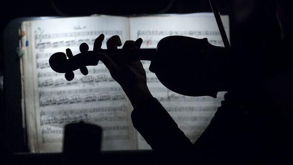 Музыкант оркестра. Архивное фото - Sputnik Таджикистан