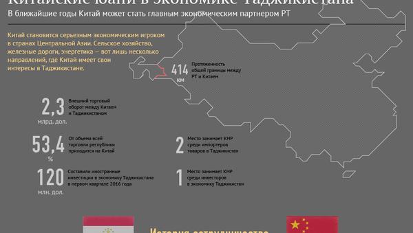 Китайские инвестиции в экономику Таджикистана - Sputnik Таджикистан