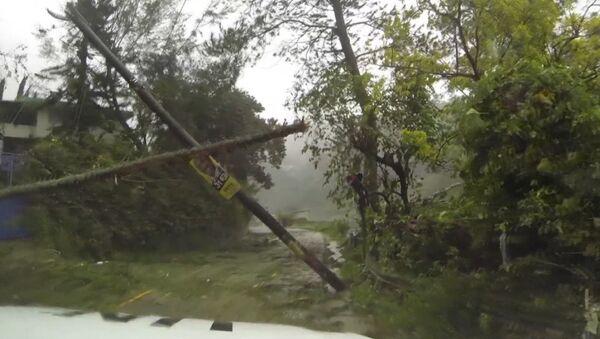Затопленные улицы и поваленные деревья - последствия урагана Мэтью на Гаити - Sputnik Таджикистан