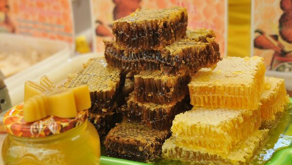 Соты с медом, архивное фото - Sputnik Таджикистан