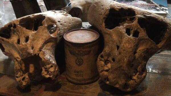 Загадка Третьего Рейха: в горах Адыгеи найдены загадочные черепа - Sputnik Таджикистан