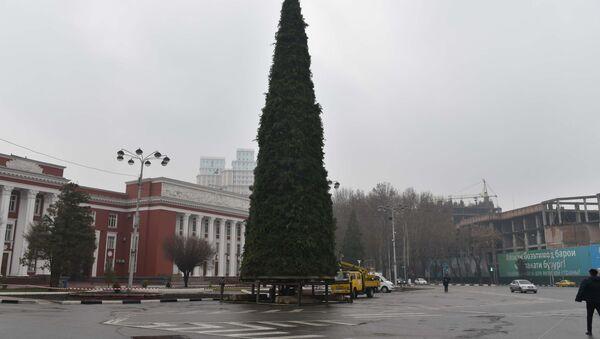 В Душанбе на площади Дусти установили новогоднюю елку - Sputnik Таджикистан