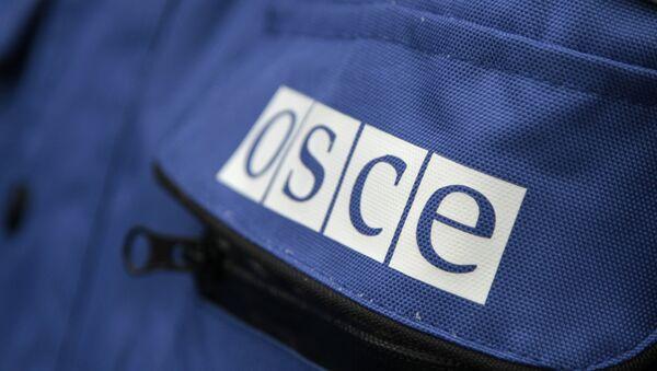 Надпись OSCE на куртке представителя ОБСЕ, архивное фото - Sputnik Тоҷикистон