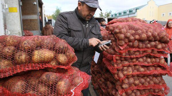 Продажа картофеля на рынке - Sputnik Таджикистан