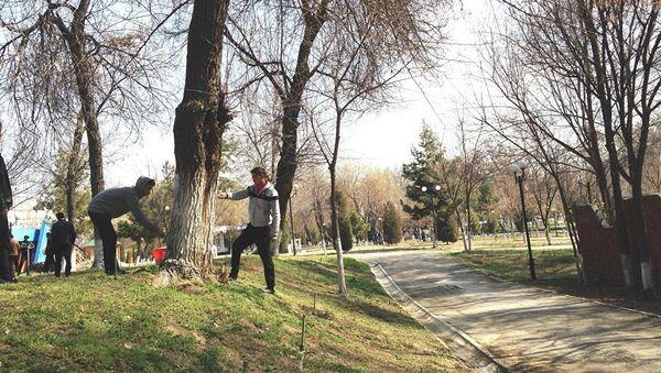 Всенародный субботник проходит в Узбекистане в преддверии Навруза - Sputnik Тоҷикистон