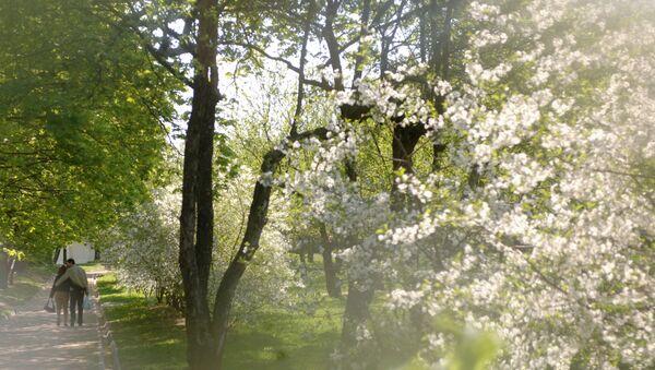 Весна, архивное фото - Sputnik Таджикистан