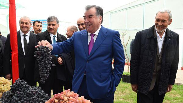 Президент Таджикистана Эмомали Рахмон на праздновании Навруза - Sputnik Тоҷикистон