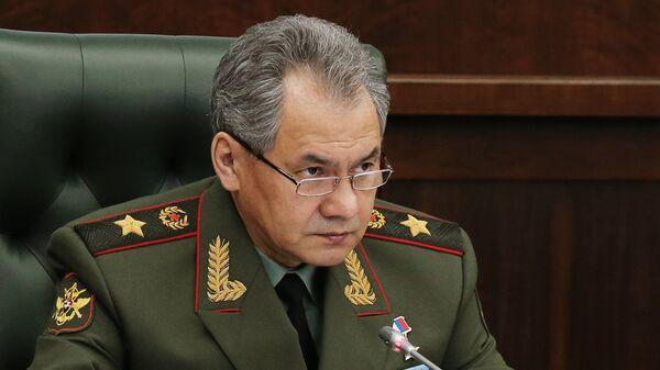 Министр обороны РФ генерал армии Сергей Шойгу  - Sputnik Таджикистан