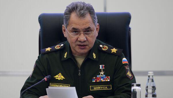 Министр обороны России Сергей Шойгу - Sputnik Тоҷикистон