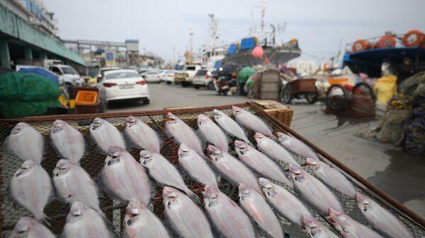 Ловля рыбы, архивное фото - Sputnik Таджикистан