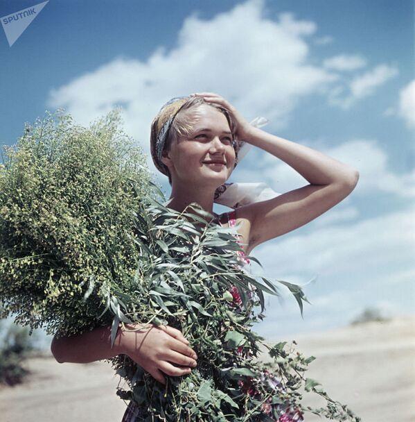 Юная жительница Ярославля, архивное фото - Sputnik Таджикистан