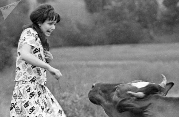 Девушка убегает от коровы. - Sputnik Таджикистан
