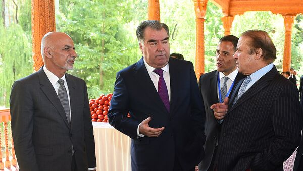 Эмомали Рахмон с главами государств участников CASA - 1000 на Варзобе - Sputnik Таджикистан