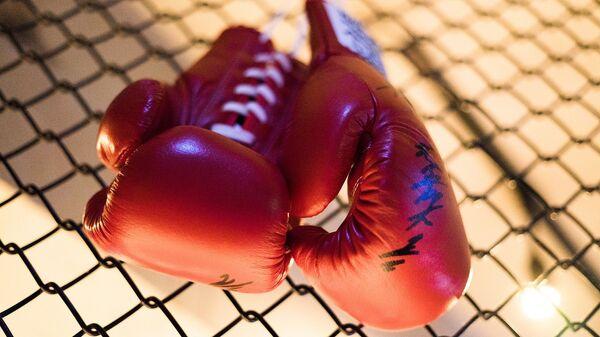 Боксерские перчатки, архивное фото - Sputnik Тоҷикистон