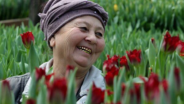 Сбор тюльпанов в теплице Владивостока - Sputnik Таджикистан