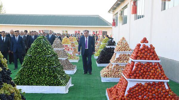 Визит президента Республики Таджикитан в Хатлонскую область - Sputnik Тоҷикистон