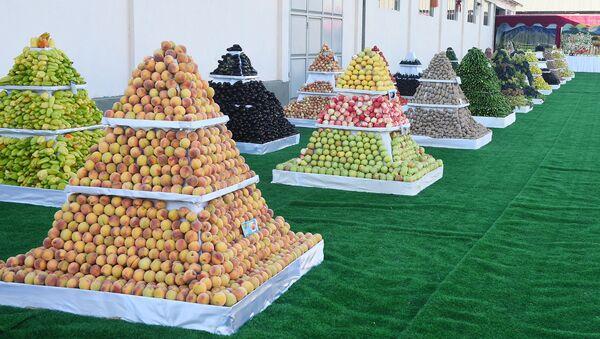 Демонстрация овощей и фруктов в Хатлонской области по случаю визита президента РТ - Sputnik Тоҷикистон