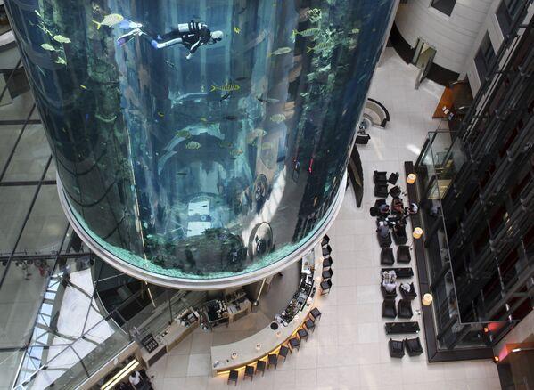 Aqua Dom - крупнейший в мире аквариум с солёной водой - Sputnik Таджикистан