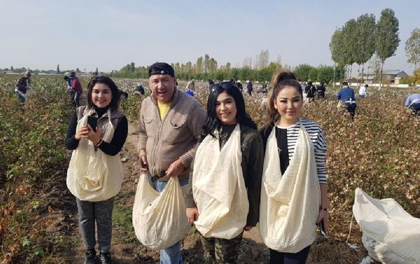 Звезды Узбекистана - на сборе хлопка - Sputnik Таджикистан