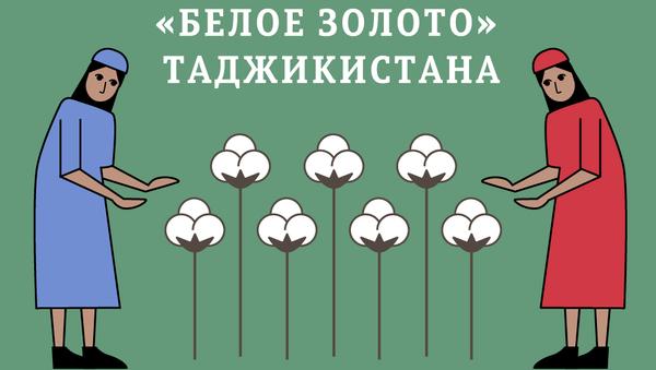 Сбор хлопка в Таджикистане 2017 - Sputnik Таджикистан