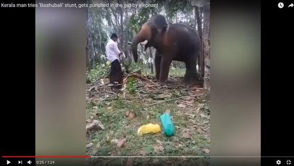 Агрессивный слон отбросил мужчину, когда тот попытался на него залезть - Sputnik Таджикистан