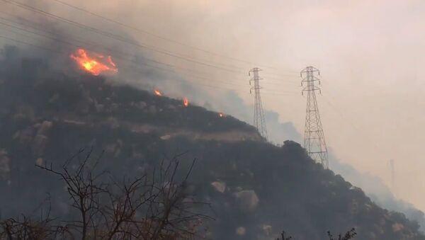 Пожары в Калифорнии - Sputnik Тоҷикистон
