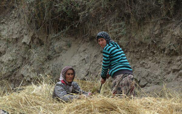 Жизнь среднеазиатской глубинки, архивное фото - Sputnik Таджикистан