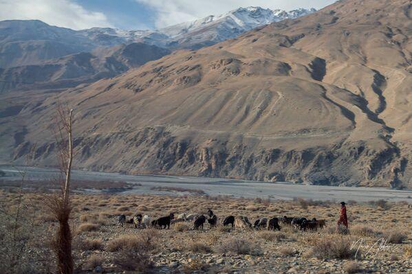 В горах Таджикистана, архивное фото - Sputnik Таджикистан