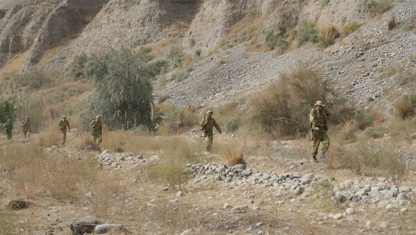 Таджикские пограничники патрулируют таджикско-афганскую границу. Архивное фото. - Sputnik Таджикистан