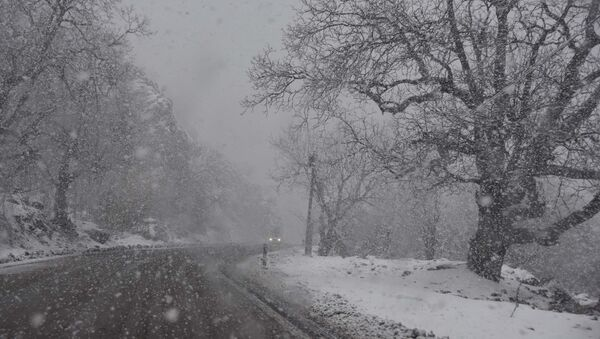 Снегопад, архивное фото - Sputnik Тоҷикистон