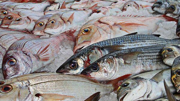 Рыба, архивное фото - Sputnik Таджикистан