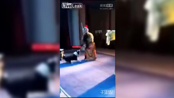 В Китае собака вцепилась в актера во время спектакля - Sputnik Тоҷикистон