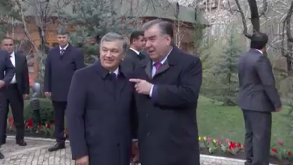 Кадры визита Мирзиеева в Таджикистан - Sputnik Тоҷикистон