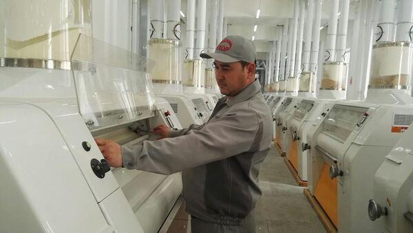 В новом цехе мукомольного комбината Анхор в Согдийской области - Sputnik Таджикистан