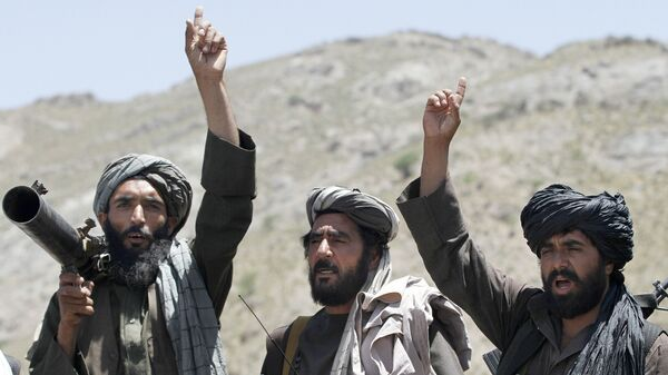 Члены движения Талибан, архивное фото - Sputnik Таджикистан