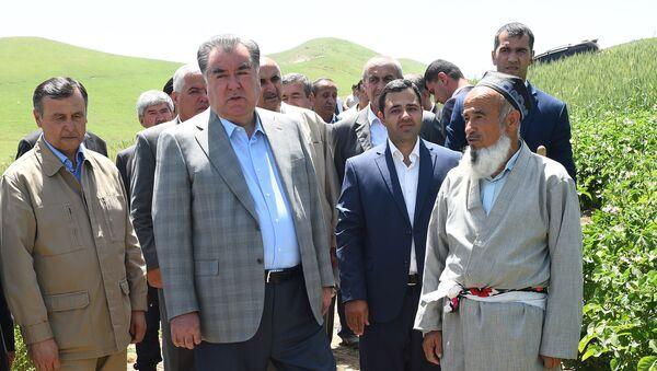 Рабочая поездка президента Таджикистана в Дангаринский район Хатлонской области - Sputnik Тоҷикистон