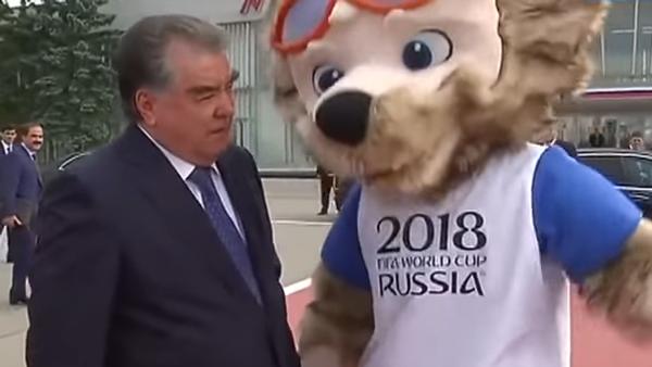 Президент Таджикистана жмет руку волку Забиваке - Sputnik Таджикистан