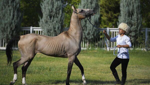 Мужчина с лошадью, архивное фото - Sputnik Таджикистан