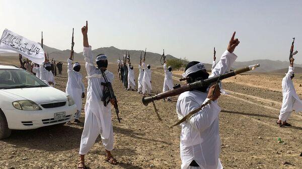 Террористы в Афганистане. Архивное фото - Sputnik Таджикистан