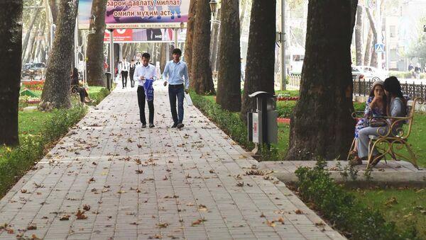 Улица в городе Душанбе, архивное фото - Sputnik Тоҷикистон