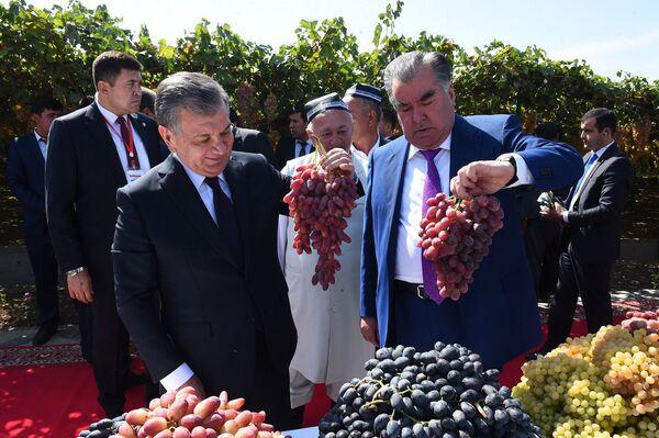 Президент Узбекистана Шавкат Мирзиёев и президент Таджикистана Эмомали Рахмон - Sputnik Таджикистан