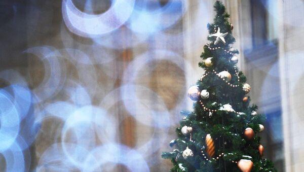 Елочные украшения на новогодней елке, архивное фото - Sputnik Таджикистан