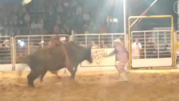 Разъяренный бык скинул седока со спины и начал нападать - видео атаки - Sputnik Таджикистан