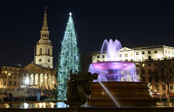 Рождественская ель на Трафальгарской площади в Лондоне - Sputnik Таджикистан